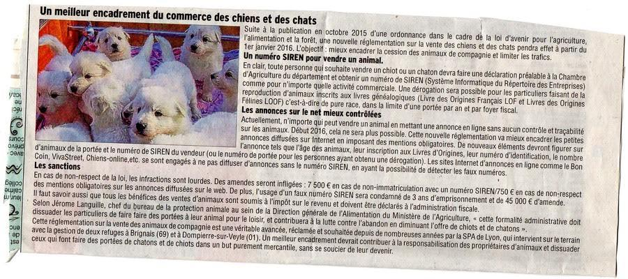Reglementation vente animaux
