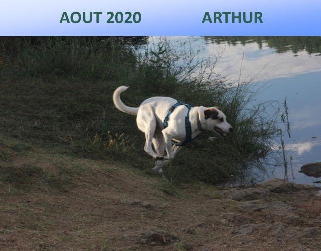 Aout 2020