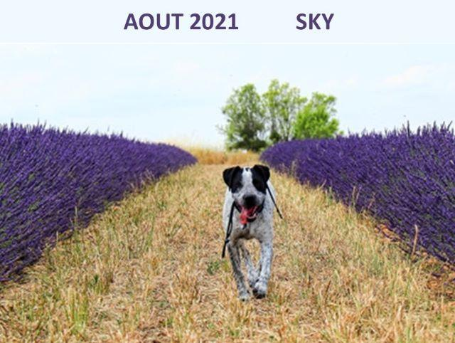 Aout 2021