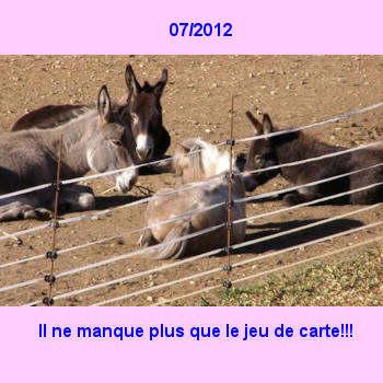 07Juillet2012